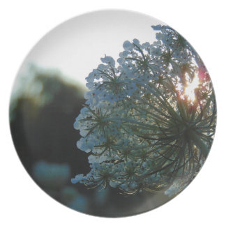 Queen Anne's Lace at Sunset Plate