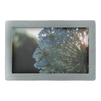 Queen Anne's Lace at Sunset Rectangular Belt Buckle