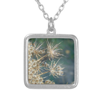 Queen Anne's Lace Close Up Silver Plated Necklace