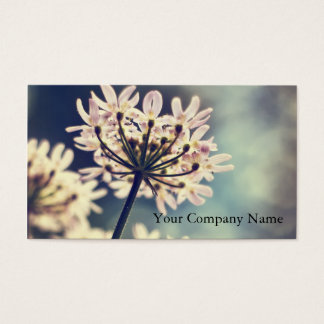 Queen Annes Lace flowers Custom Business Cards