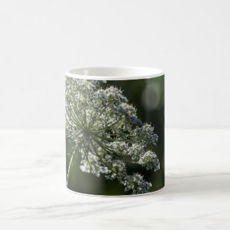 Queen Anne's Lace White Wildflower Mug Cup