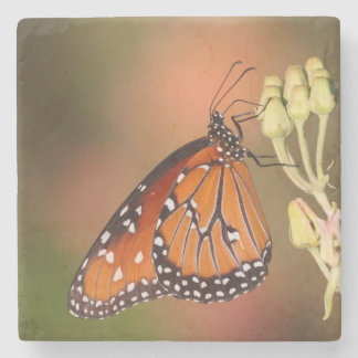 Queen butterfly on a branch stone coaster