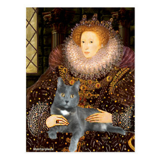 Queen - grey cat postcard