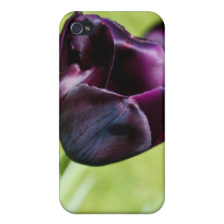 Queen of the Night Cover For iPhone 4