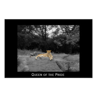 Queen of the Pride Poster