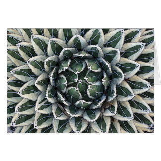 Queen Victoria agave card