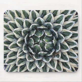 Queen Victoria agave, variegated Mouse Pad