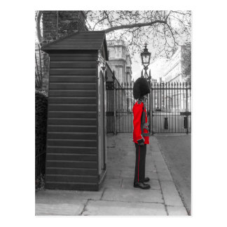 Queen's Guard standing guard at Clarence House Postcard