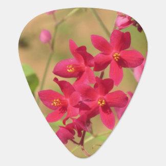 Queen's Wreath Blooms Guitar Pick