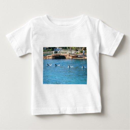 Baby Gifts Queensland : Queensland tshirt zazzle