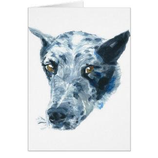 QueensLand Heeler Dog Card