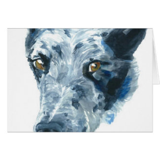 QueensLand Heeler Dog Greeting Card