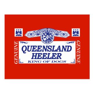 Queensland Heeler Postcard