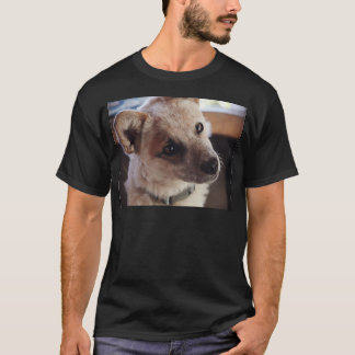 Queensland Heeler Pup Ringo T-Shirt