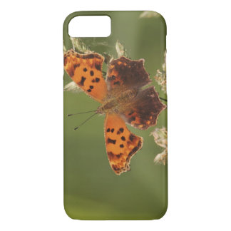 Question Mark butterfly, Polygonia iPhone 7 Case