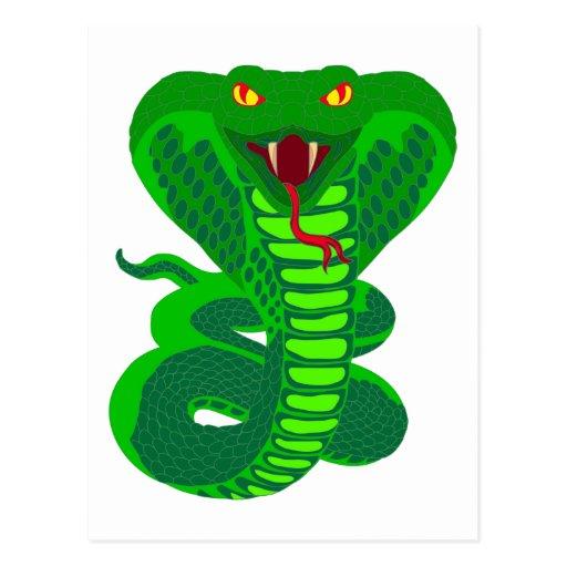 Queue Kobra snake cobra Post Cards