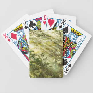 Queulat Park, Patagonia Forest Landscape, Aysen, Bicycle Playing Cards