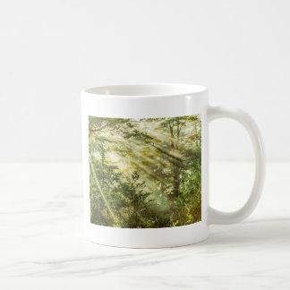 Queulat Park, Patagonia Forest Landscape, Aysen, Coffee Mug