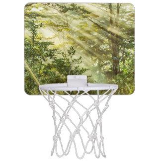 Queulat Park, Patagonia Forest Landscape, Aysen, Mini Basketball Hoop
