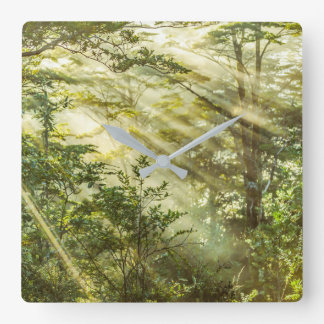 Queulat Park, Patagonia Forest Landscape, Aysen, Square Wall Clock