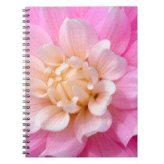 Quiet Beauty Notebook
