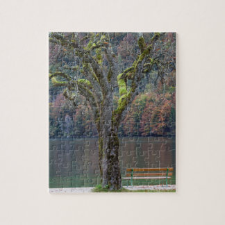 Quiet bench along a lake, Germany Jigsaw Puzzle