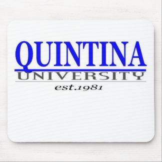 quin. univ mouse pad