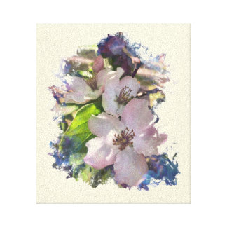 Quince blossoms in Spring Canvas Print