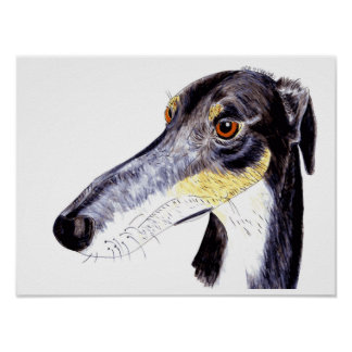 Quirky lurcher greyhound poster
