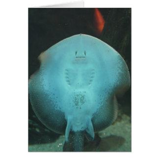 Quirky Manta Ray Greeting Card