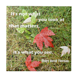 Quote byThoreau: It's not what you look at that Tile