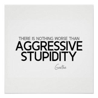 QUOTES: Goethe: Aggressive stupidity
