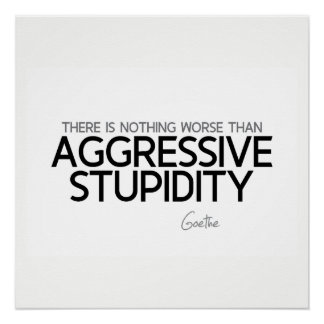 QUOTES: Goethe: Aggressive stupidity Poster