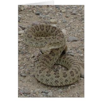 R0009 Prairie Rattlesnake Card