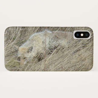 R0013 Coyote in the Grass Iphone 8/7 phone case