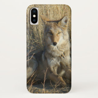 R0015 Coyote Laying Iphone 8/7 phone case