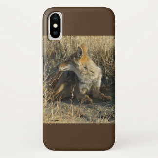 R0016 Coyote Scratching Iphone 8/7 phone case