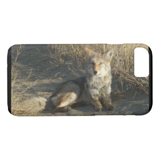 R0019 Coyote Laying Iphone 8/7 phone case