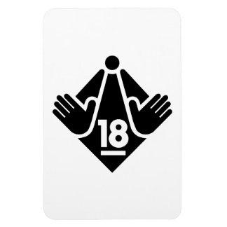 R18 MAGNET