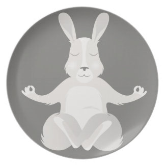R is for Rabbit Plate