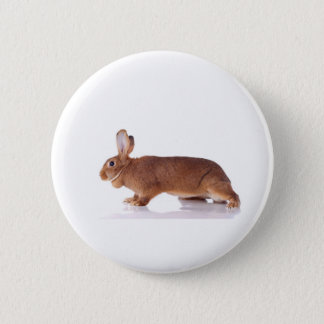 rabbit 6 cm round badge