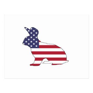 "Rabbit ""American Flag"" Postcard"