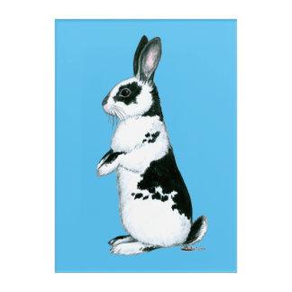 Rabbit:  Black and White Acrylic Wall Art