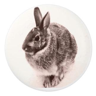 Rabbit  Black and white nob ,drawer pull, Ceramic Knob