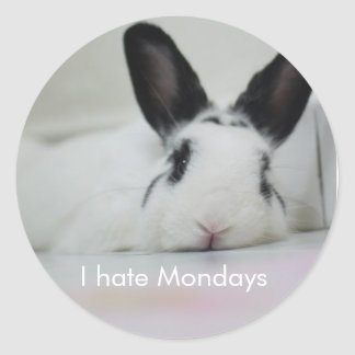 Rabbit Bunny Sticker - I hate Mondays