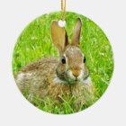 rabbit ceramic ornament