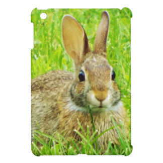 rabbit cover for the iPad mini
