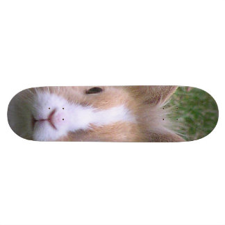 rabbit custom skateboard