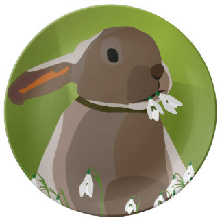 Rabbit eating snowdrops plate