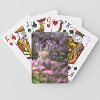Rabbit farm playing cards